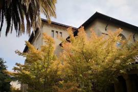 斯坦福大学究竟喜欢录取什么样的学生